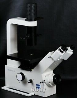 Carl Zeiss Telaval 31 Inverted Microscope with 10x & 20x Objectives